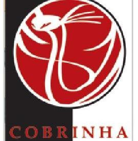 Rubens Charles Cobrinha BJJ Set Instructional Review