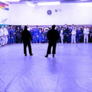 Top Current Instructors in Jiu Jitsu