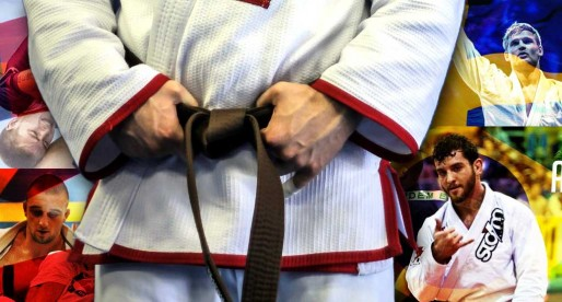 Top Brown Belts of 2015