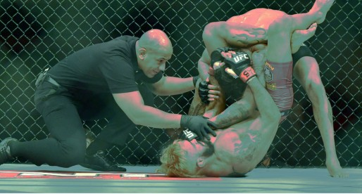 UFC's Submission Game by the Numbers