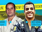 BJJ Summer Camp in Spanish Paradise
