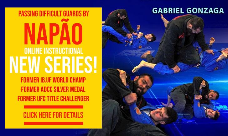 Gabriel Gonzaga Instructional