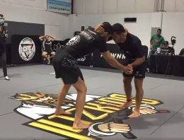 Jitz King Results, Brown Belts Marinho and Taza Rule in Black Belt Shark Infested Waters