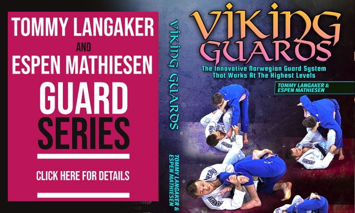 Viking Guard Instructional