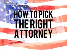 How To Pick The Right USA Immigration Attorney, Advice For Jiu-Jitsu Athletes